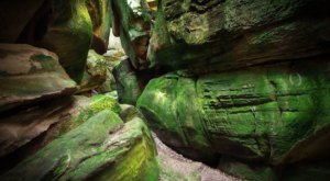The Sandstone Labyrinth In Virginia's Channels Natural Area Preserve Looks Like Something From Another Planet