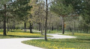 Take Advantage Of The Amazing Trails And Activities At Patterson Lake Recreational Area In North Dakota