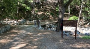 Take An Easy Out-And-Back Trail To Enter Another World At Switzer Falls In Southern California