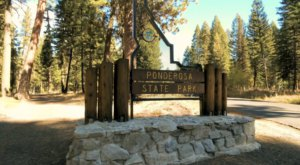 Enjoy Sweet Solitude When You Stay At A Primitive Campsite At Ponderosa State Park In Idaho