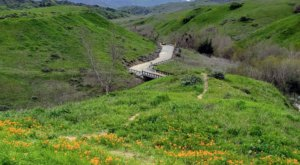 8 Easy And Beautiful Spring Hikes Everyone In Southern California Will Love