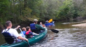 Spend An Afternoon Taking A Delightful Kayak Paddling Tour Through Lynches River In South Carolina This Spring