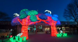 You Can Still See Kentucky's Stunning Lantern Festival With A Behind The Scenes Virtual Tour
