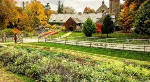 Drive Out To Blue Hill At Stone Barns, A Farmhouse Restaurant In New York That's Worth The Scenic Trip