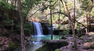 Be In Awe Of The Natural Beauty Found On This Short, Secluded Hike In Alabama's William B. Bankhead National Forest