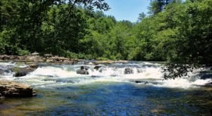 Visit The Amicalola River Trail In Georgia For An Epic Waterside Springtime Hike