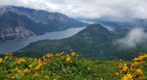 5 Beautiful Hiking Trails In Washington's Columbia River Gorge, Where Spring Comes Early