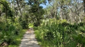 Take An Easy Out-And-Back Trail To Enter Another World At Fort Caroline National Memorial In Florida