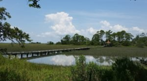 Hunting Island State Park In South Carolina Has A Boardwalk That Leads To A Secret Marsh