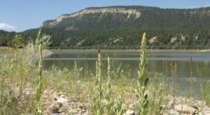 El Vado Lake State Park Is One Of The Most Scenic Places To Camp This Spring In New Mexico