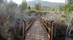Visit Galena Creek, An Idyllic Isolated Spot In Nevada For People Who Want To Avoid Crowds