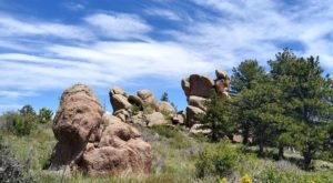 Find The First Signs Of Spring In Wyoming Along Stone Temple Circuit In Curt Gowdy State Park