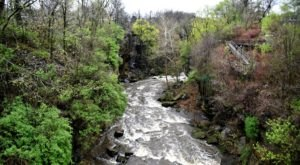The Boardwalk Hike At High Bridge Glens Near Cleveland Just Might Make Your Stomach Drop