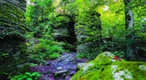 People Have Been Exploring Panama Rocks Scenic Park Near Buffalo Since 1885