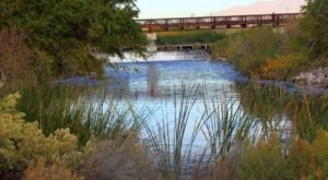 Visit The Clark County Wetlands Park In Nevada For A Beautiful Waterside Springtime Hike
