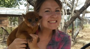 Cuddle With Kangaroos, Foxes, And Other Uncommon Critters At Janda Exotics Animal Ranch In Texas