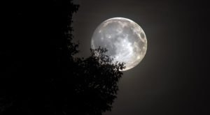 The Biggest And Brightest Full Moon Of The Year Will Be Visible In Kentucky In Early April