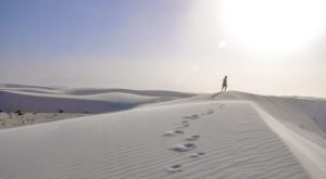 Most People Don't Know Ice Age Fossils Are Hiding At White Sands National Park In New Mexico