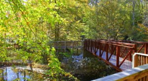 Pocahontas State Park In Virginia Is A Big Secluded Treasure
