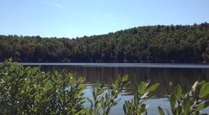 You May Never Want To Leave The Serenity Of North Pond In Massachusetts
