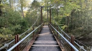 Take An Easy Loop Trail To Enter Another World At The River Trail In Louisiana
