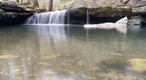 Nine Penny Branch Loop Trail Is A Beginner-Friendly Waterfall Trail In Indiana That's Great For A Family Hike