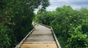 Escape To These Picture Perfect Nature Trails Near New Orleans For A Break From It All