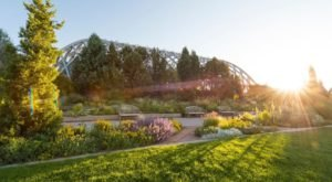 Take A Virtual Tour Through A Sea Of Hundreds Of Thousands Of Flowers With Denver Botanic Gardens In Colorado