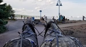 Take A Carriage Ride Through Canal Park For A Truly Unique Minnesota Experience