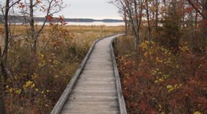 The Sandy Point Identification Trail In New Hampshire Leads To Incredibly Scenic Views