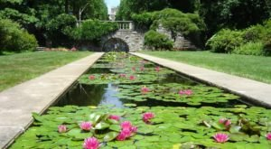 Explore 6 Of New Jersey's Most Beautiful Gardens On This Virtual Road Trip
