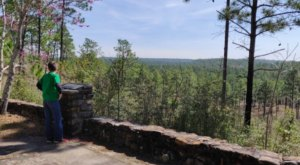 Tree Top Views Await You On The Backbone Trail In Louisiana