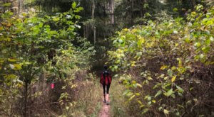 Escape The Entire World On The Secluded Kincaid Loop Trail In Louisiana