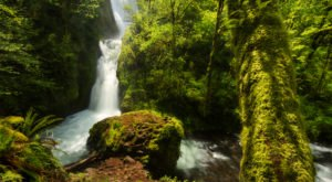 Bridal Veil Falls Trail Is A Beginner-Friendly Waterfall Trail In Oregon That's Great For A Family Hike