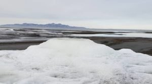 Rare Salt Formations At The Great Salt Lake Were Recently Discovered In Utah
