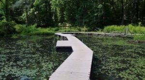Hike Through Mesmerizing Wetlands At Wahkeena Nature Preserve In Ohio