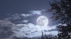 The Final Supermoon Of 2020 Will Be The Biggest And Brightest Of The Year In Illinois