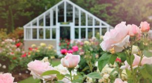 Fuller Gardens In New Hampshire Will Completely Transform When The Flowers Bloom This Spring