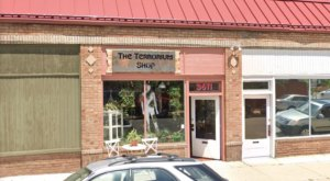The Terrorium Shop In Colorado May Just Be The Quirkiest Plant Shop In America