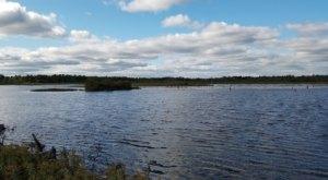 Tuttle Marsh Wildlife Area In Michigan Is A 5,000-Acre Wetland Wonderland