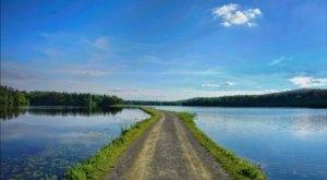 Take A Quiet And Serene Lake Trek On Ashley Reservoir Trail In Massachusetts