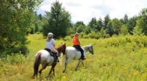 This Horseback Riding Experience In New Hampshire Offers Something New And Exciting To Try This Summer