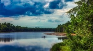 New Jersey's Pine Barrens Are A Big Secluded Treasure