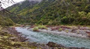 Follow The River On This Simple 3-Mile Hike Through The Woods In Northern California