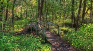 Minnesota's Sandstone Bluffs Trail Will Lead You On A Beautiful Trip Through The Woods