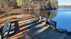 Gates Pond Trail Is A Surreal Escape From Civilization In Massachusetts