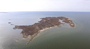 A Drone Flew High Above An Uninhabited Island In Maryland And Caught The Most Incredible Footage