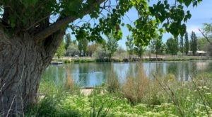 A Peaceful Outing At Wilson Springs Ponds In Idaho Is An Adventure For The Whole Family