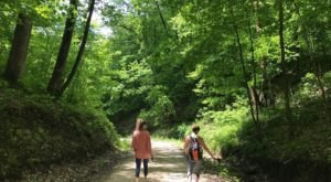 Yellow River State Forest In Iowa Is A Big Secluded Treasure