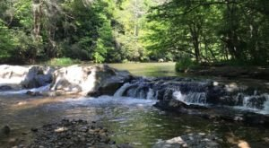 Take A Scenic Creekside Hike Deep In A 1400-Foot-Deep Gorge Along The Laurel Creek Trail In North Carolina